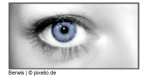 Zielgruppe im Blick berwis / pixelio.de