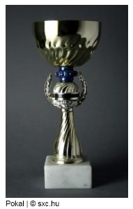 Symbolbild: Pokal