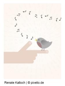 Singvogel