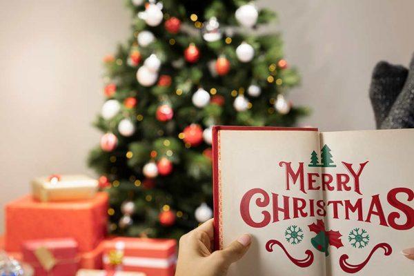 Bücher zu Weihnachten, Lesetipps für Technische Redakteure
