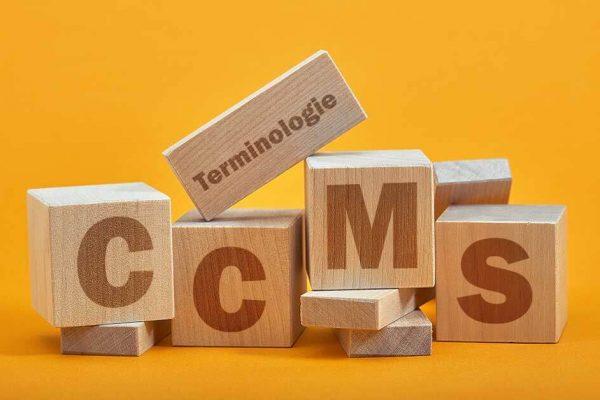 CMS-Einführung und Terminologiemanagement